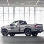 2014 F-150 Tremor Rear Three Quarter 2